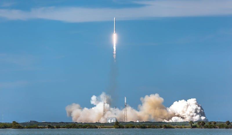 Illustration for article titled Sigue en directo el lanzamiento (y posible aterrizaje) del cohete más potente de SpaceX [Actualizado]