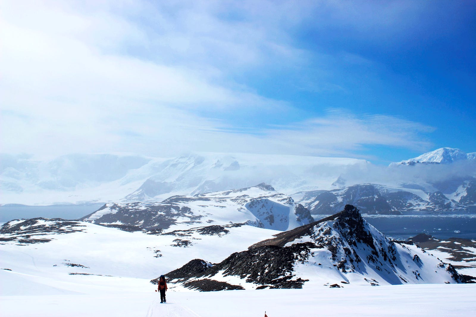 Meet the Guy Who Spends Months in the Antarctic Collecting Penguin Poop