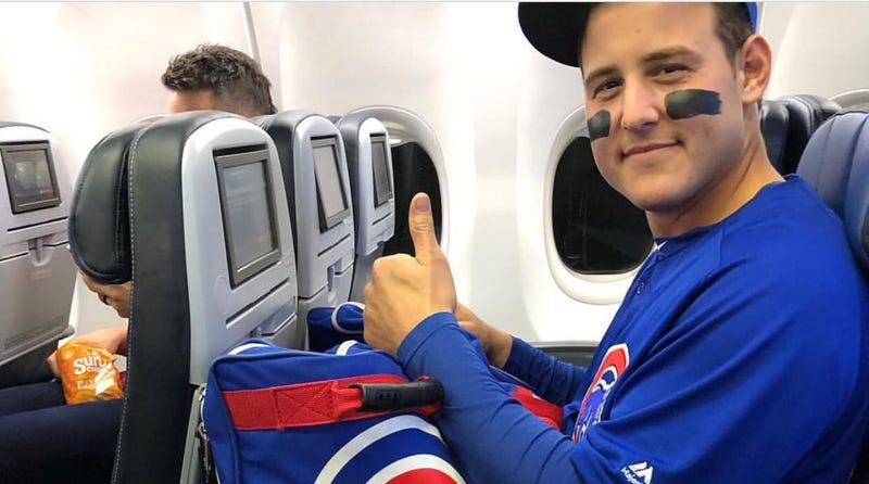 Illustration for article titled Anthony Rizzo Dealt With The Cubs' Insane Travel Schedule By Never Taking Off His Uniform