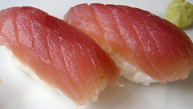 Delicious sushi grade tuna linked to salmonella outbreak for Sashimi grade fish