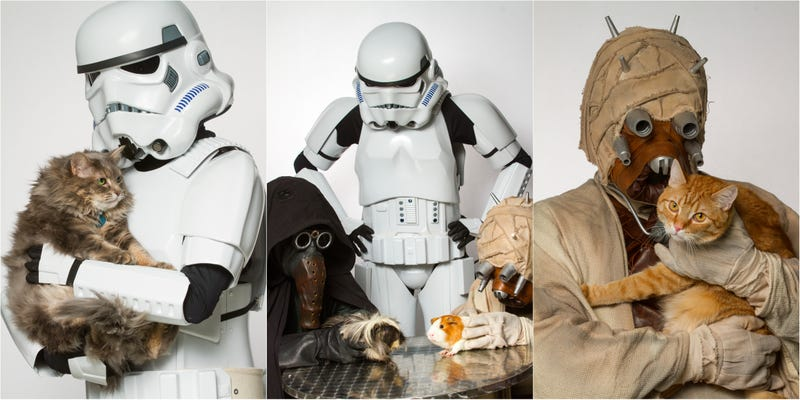Illustration for article titled These Star Wars Cosplayers Want You to Adopt Pets From a Shelter