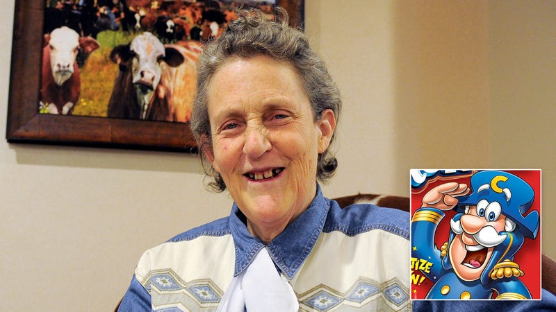 Illustration for article titled Death With Dignity: Temple Grandin Has Developed A New Mechanical Restraint System For Humanely Slaughtering Cap'n Crunch