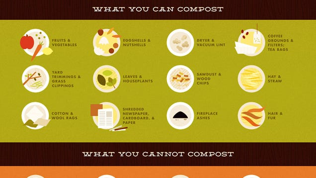 this infographic shows what you can and can 39 t turn into compost. Black Bedroom Furniture Sets. Home Design Ideas