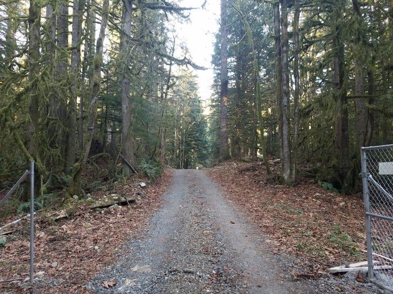 The looooong and winding road 🎶