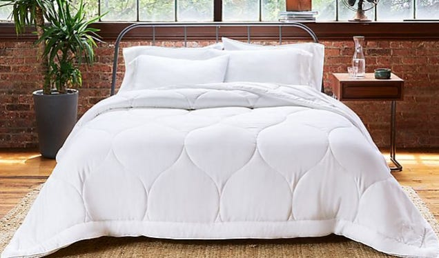 Snag a Hypoallergenic, All-Season Buffy Cloud Comforter Made of Super Soft Eucalyptus Lyocell and 100% Recycled Fill for Half off (as Low as $65)