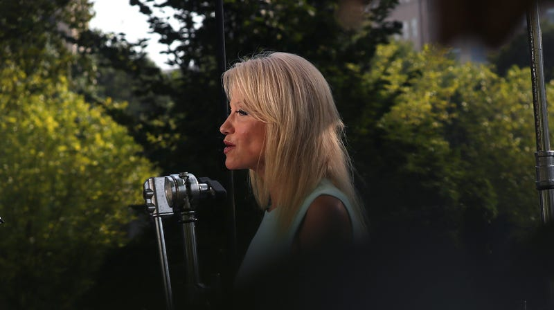 Illustration for article titled Kellyanne Conway Hummed a Taylor Swift Song on Fox News Because Only Bad Things Happen Now