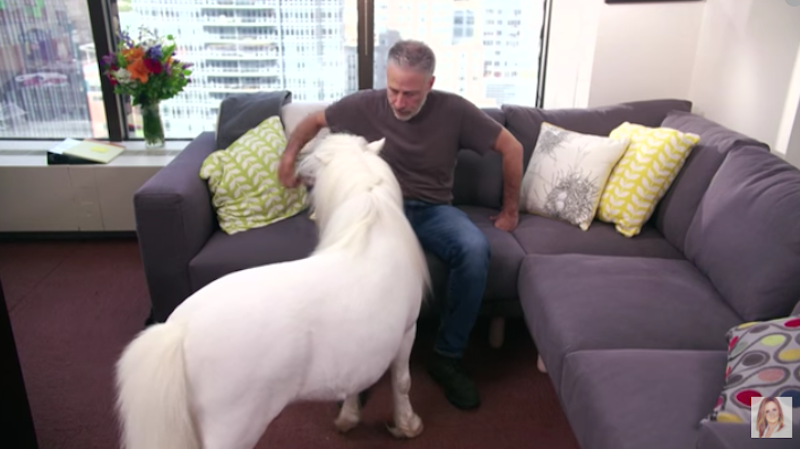 Illustration for article titled Jon Stewart Made an Appearance on Samantha Bee's Show with a Tiny Horse