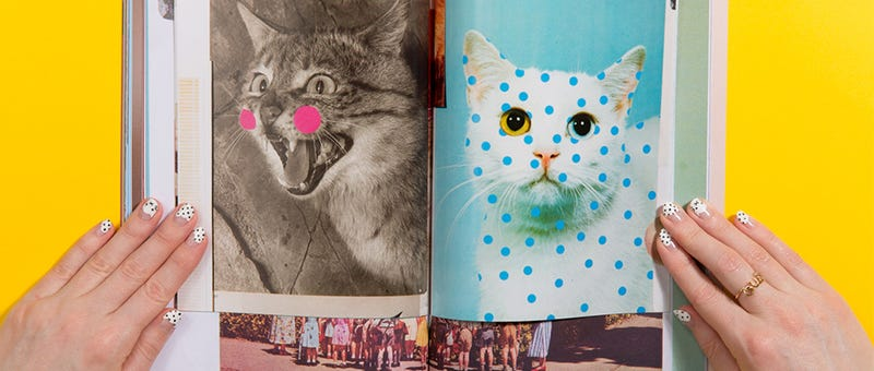 Illustration for article titled Cat People?