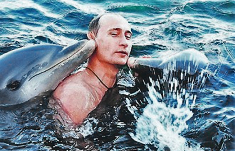 Illustration for article titled Russia Is Shopping For Dolphins To Turn Into Undersea Commandos