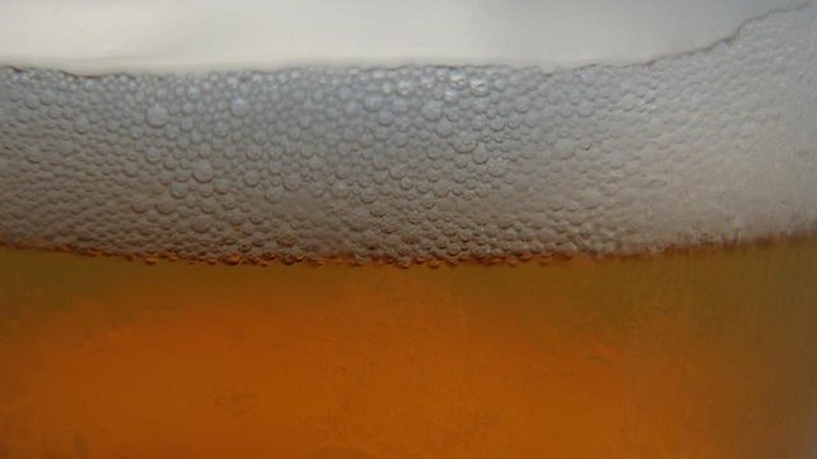 Why Grease Kills The Head On A Beer