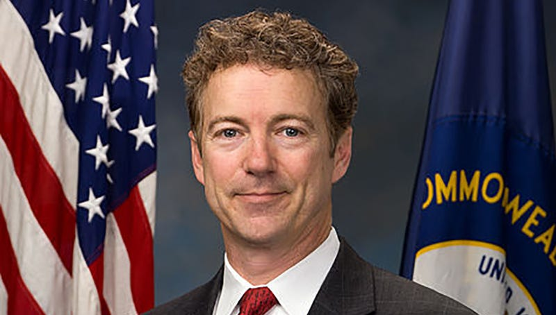 Illustration for article titled Who Is Rand Paul?