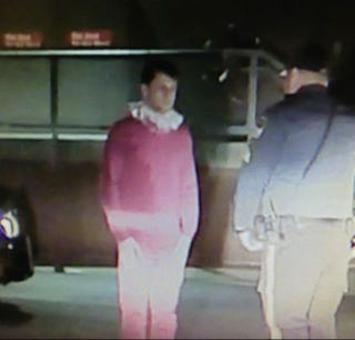 Illustration for article titled Merry Christmas: Man Dressed as Elf on A Shelf Arrested for DWI
