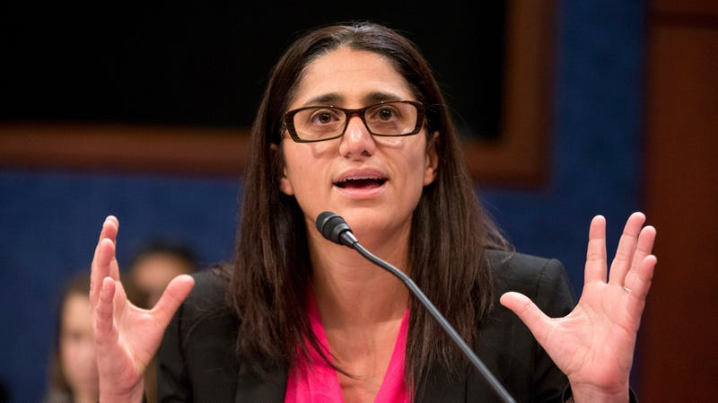 Dr. Mona Hanna-Attisha speaks during a House Democratic Steering and Policy Committee hearing on The Flint Water Crisis on Capitol Hill in February 2016.