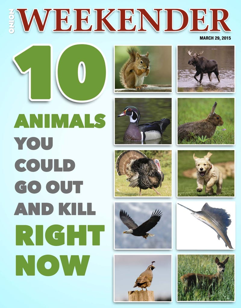 Illustration for article titled 10 Animals You Could Go Out And Kill Right Now
