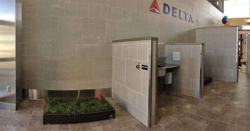 ... Detroit S Airport Just Installed A 75 000 Indoor Dog Bathroom ...