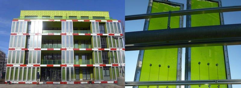 Illustration for article titled Construyen el primer edificio cuya temperatura se regula con algas