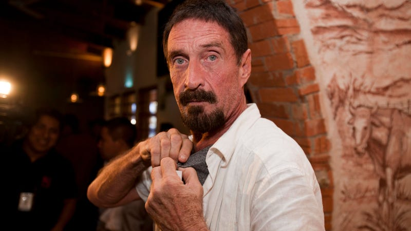 Illustration for article titled John McAfee Is Back, This Time at a 'Hackproof' Crypto Security Firm