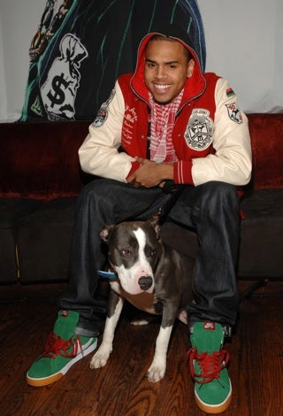 Illustration for article titled Chris Brown Attempts To Rescue His Image By Rescuing Animals