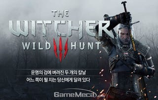 Illustration for article titled The Witcher 3 Getting Slammed Over Korean Language Screw Up [UPDATE]