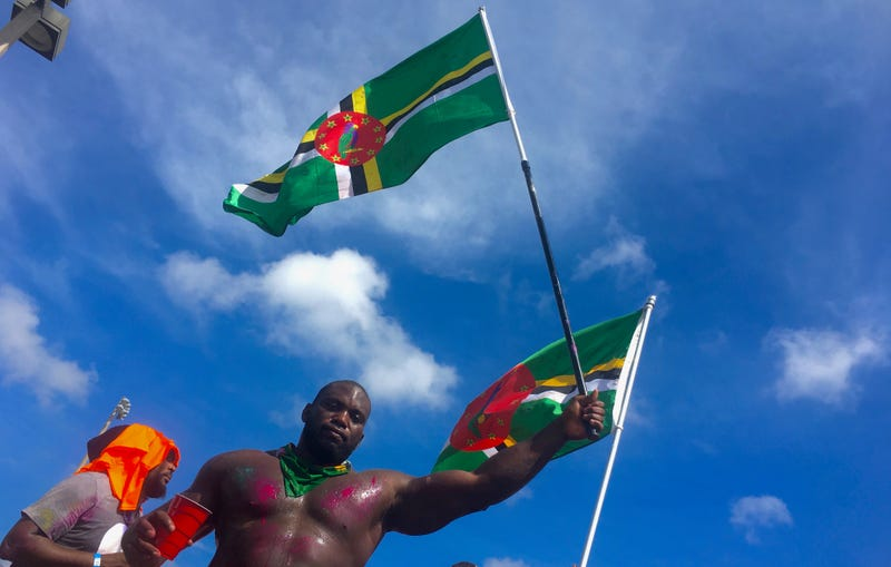 A reveler waves the flag of Dominica at the annual Miami Broward One Carnival on Oct. 7, 2017. (Kenya Downs)