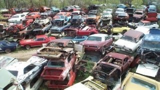 Illustration for article titled Is This The World's Largest Vintage Mustang Junkyard?