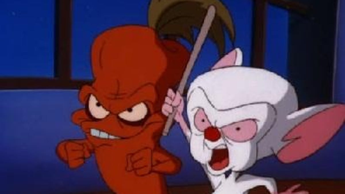Every Single Pinky And The Brain Plan To Take Over The World Ranked