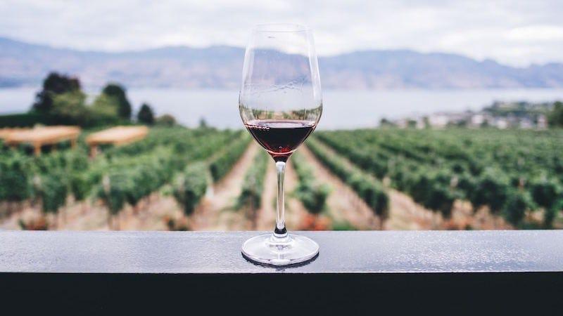 La forma de una copa de vino puede alterar el sabor.