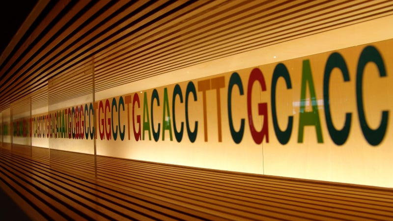 Illustration for article titled Mail-Order Genetic Tests May Turn Up a Lot of False Positives
