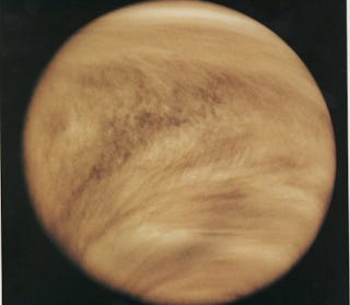 Illustration for article titled Did Venus Once Have Oceans of Liquid Carbon Dioxide?