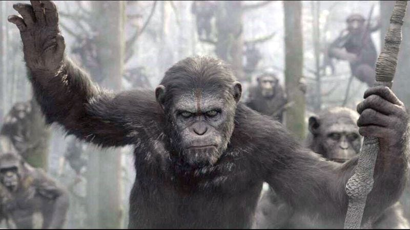 Illustration for article titled Matt Reeves signs on to direct another Planet Of The Apes sequel