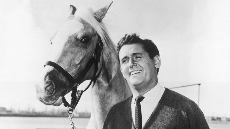 Mr. Ed (Photo: Hulton Archive/Getty Images)