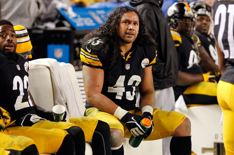 Illustration for article titled The Steelers Really, Really Hope Troy Polamalu Retires