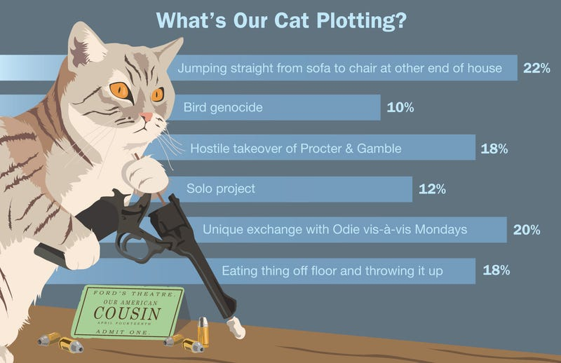 Illustration for article titled What's Our Cat Plotting?