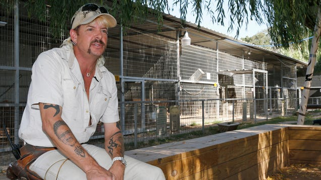 Joe Exotic Will Start Selling NFTs and Weed From Prison