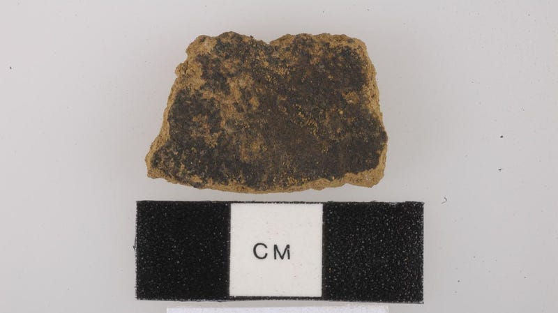 One of several pottery shards found at the Pulau Ay archeological site containing traces of food, including nutmeg.