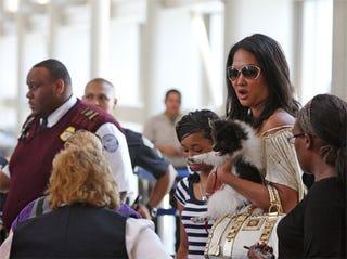 Illustration for article titled Kimora Lee Simmons & Pup Snarl At TSA Screener