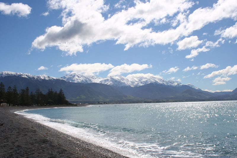 Kaikoura, South Island (Jennifer Neal)