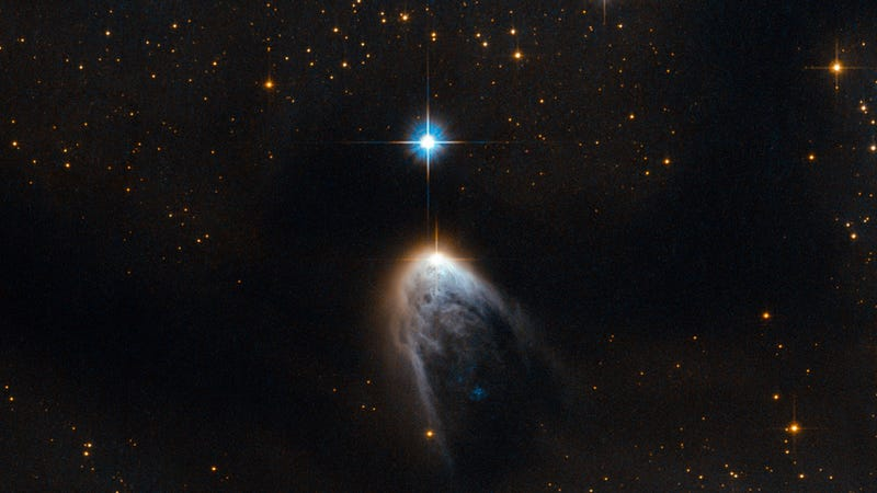 Illustration for article titled An Infant Star Pierces Through Its Birth Cloud