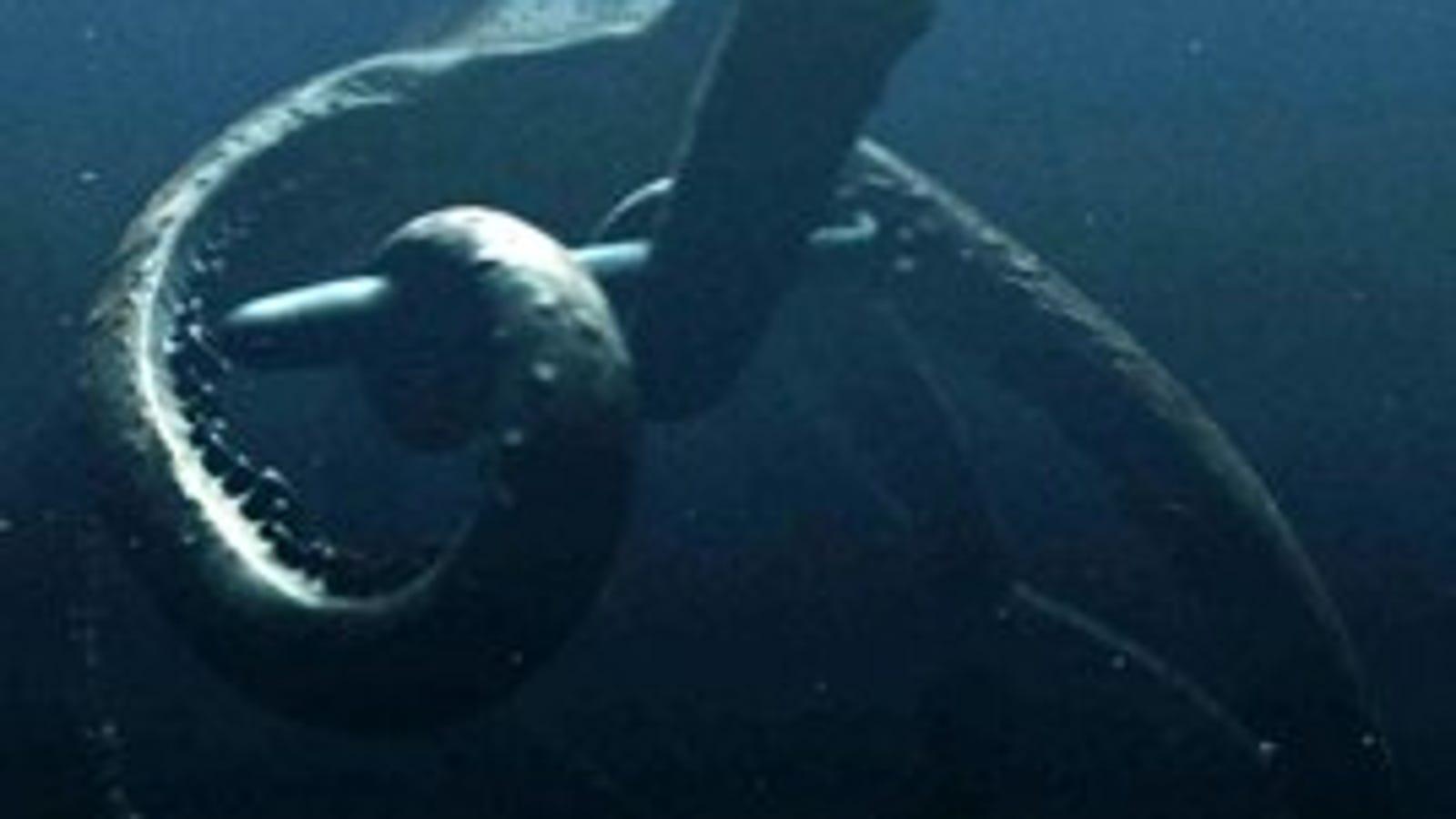 Mega Shark Vs  Giant Octopus: The Trailer
