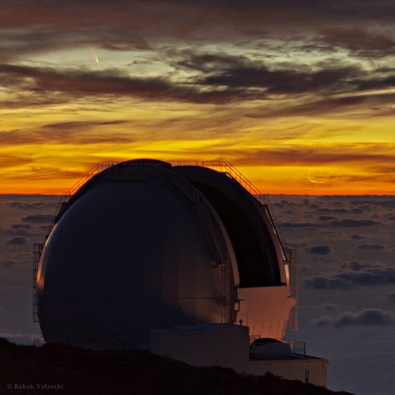 Illustration for article titled Así de espectacular se vio el cometa PanStarrs al rozar la Tierra