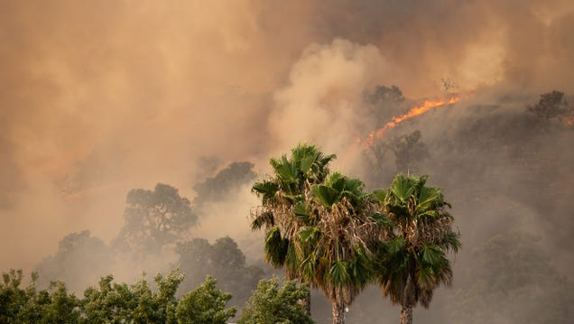 How to Help Those Impacted by the Northern California Wildfires