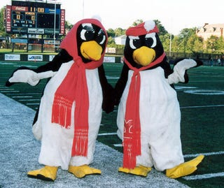 Illustration for article titled Pick Against The Youngstown State Penguins At Your Own Risk, Pollsters