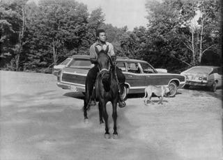 Illustration for article titled In Honor Of His 70th Birthday, Here's Muhammad Ali Riding A Horse