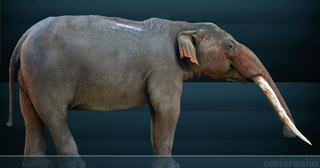 Illustration for article titled North America's First Foragers Hunted These Elephant-like Creatures