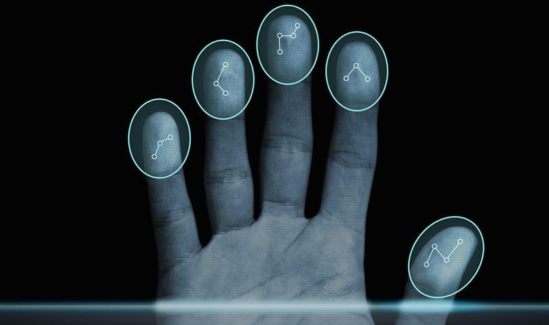 Illustration for article titled Adermatoglifia, la extraña mutación que elimina las huellas dactilares