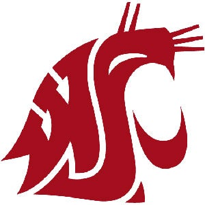 Illustration for article titled Washington State Cougars