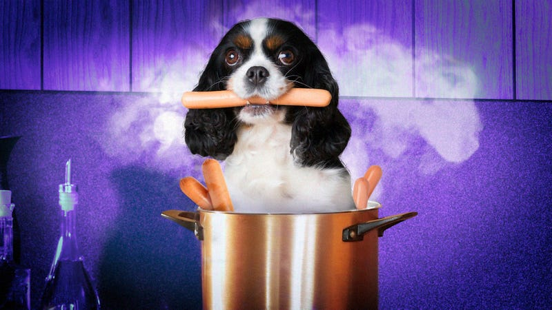 Let's settle the debate: Is hot dog water broth or stock?