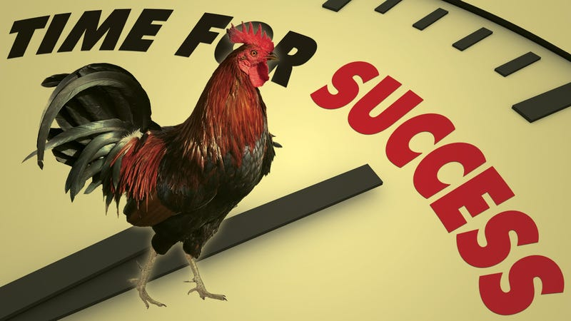 Illustration for article titled 5 Things Successful People Do Before 8 AM