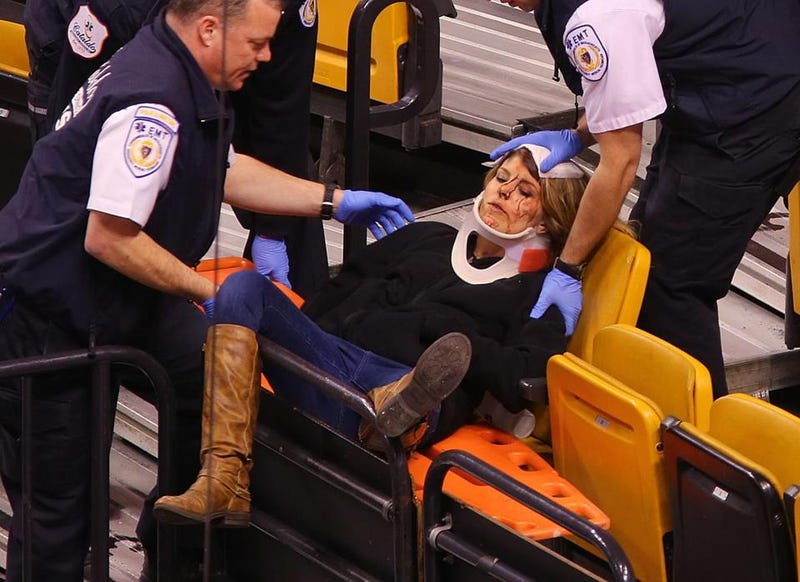 Illustration for article titled Netting Falls At Bruins Game, Injuring Two