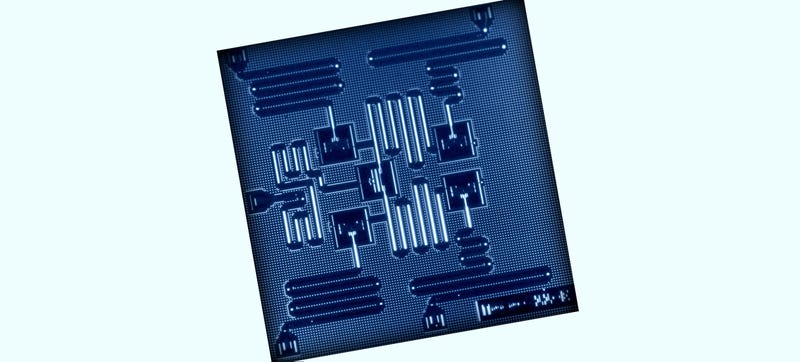 There's Now a Real Quantum Computer That Anyone Can Use Remotely